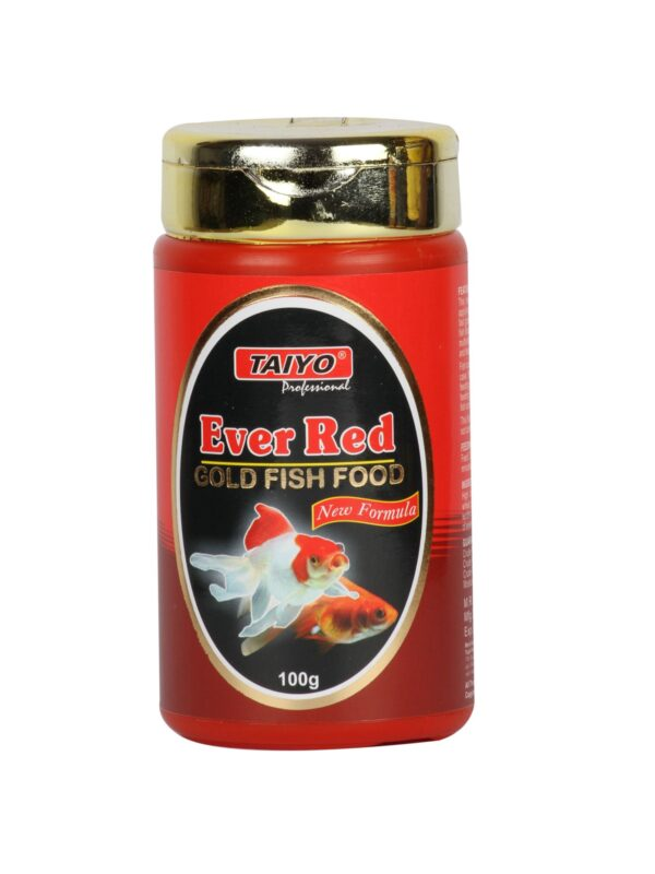 ever-red-gold-fish